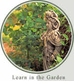Learn in the Garden